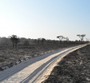 "Makgadikgadi<br><span class=""cc-link""><a href=""http://www.flickr.com/photos/abibhattachan/4954703541/"" target=""_blank"">Autor:abi.bhattachan</a><a href='http://creativecommons.org/licences/by/3.0'> <img class=""cc-icon"" src=""mods/_img/cc_by-small.png""></a></a></span>"