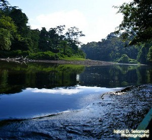 "Do Parku Narodowego Temburong można dostać się jedynie drogą wodną<br><span class=""cc-link""><a href=""http://www.flickr.com/photos/somebal/4378387011/"" target=""_blank"">Autor:SomeBaL</a><a href='http://creativecommons.org/licences/by-sa/3.0'>&nbsp;<img class=""cc-icon"" src=""mods/_img/cc_by_sa-small.png""></a></a></span>"