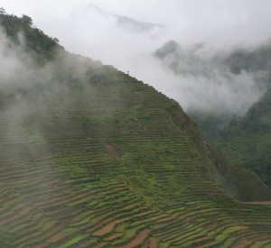 Tarasy ryżowe Banaue - wyspa Luzon