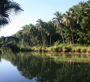 Loboc River - Nuts Huts - Bohol