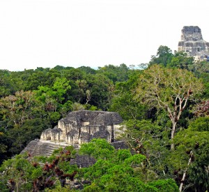 """Park Narodowy Tikal<br><span class=""""cc-link""""><a href=""""http://www.flickr.com/photos/archer10/2214575154/"""" target=""""_blank"""">Autor:Dennis Jarvis</a><a href='http://creativecommons.org/licences/by-sa/3.0'><img class=""""cc-icon"""" src=""""mods/_img/cc_by_sa-small.png""""></a></a></span>"""