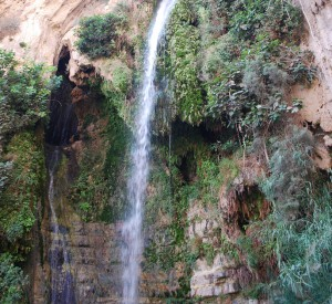 "Park Narodowy Ein Gedi<br><span class=""cc-link""><a href=""http://www.flickr.com/photos/chadica/2958272448/"" target=""_blank"">Autor:Chadica</a><a href='http://creativecommons.org/licences/by/3.0'> <img class=""cc-icon"" src=""mods/_img/cc_by-small.png""></a></a></span>"