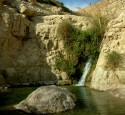 "<span class='dscr'>Park Narodowy Ein Gedi</span><br><span class=""cc-link""><a href=""http://www.flickr.com/photos/banna123456/2239133705/"" target=""_blank"">Autor:Hannah Rosen</a><a href='http://creativecommons.org/licences/by/3.0'>&nbsp;<img class=""cc-icon"" src=""mods/_img/cc_by-small.png""></a></a></span>"