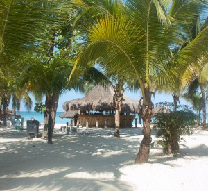 "Negril<br><span class=""cc-link""><a href=""http://www.flickr.com/photos/ikarl67/5513952076/"" target=""_blank"">Autor:Karl Kyhl</a><a href='http://creativecommons.org/licences/by-nd/3.0'> <img class=""cc-icon"" src=""mods/_img/cc_by_nd-small.png""></a></a></span>"