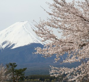 "Fuji<br><span class=""cc-link""><a href=""http://www.flickr.com/photos/skyseeker/132720931/"" target=""_blank"">Autor:skyseeker</a><a href='http://creativecommons.org/licences/by/3.0'> <img class=""cc-icon"" src=""mods/_img/cc_by-small.png""></a></a></span>"