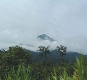 "Mount Cameroon<br><span class=""cc-link""><a href=""http://commons.wikimedia.org/wiki/File:Mont-Cameroun.jpg"" target=""_blank"">Autor:Normand Roy</a><a href='http://creativecommons.org/licences/by/3.0'>&nbsp;<img class=""cc-icon"" src=""mods/_img/cc_by-small.png""></a></a></span>"