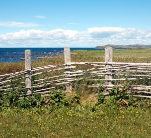"Park historyczny L'Anse aux Meadows<br><span class=""cc-link""><a href=""http://www.flickr.com/photos/suecan/4359011607/"" target=""_blank"">Autor:Sue Cantan</a><a href='http://creativecommons.org/licences/by/3.0'>&nbsp;<img class=""cc-icon"" src=""mods/_img/cc_by-small.png""></a></a></span>"