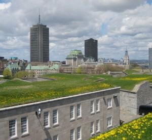 "Pokryte dywanem trawy dachy cytadeli w Quebec<br><span class=""cc-link""><a href=""http://www.flickr.com/photos/elpadawan/2536676990/"" target=""_blank"">Autor:elPadawan</a><a href='http://creativecommons.org/licences/by-sa/3.0'>&nbsp;<img class=""cc-icon"" src=""mods/_img/cc_by_sa-small.png""></a></a></span>"