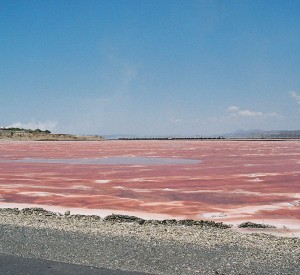 "Jezioro Magadi<br><span class=""cc-link""><a href=""http://www.flickr.com/photos/orgel/2213755862/"" target=""_blank"">Autor:David Orgel</a><a href='http://creativecommons.org/licences/by-sa/3.0'>&nbsp;<img class=""cc-icon"" src=""mods/_img/cc_by_sa-small.png""></a></a></span>"