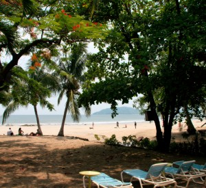 "Plaża Tamarindo<br><span class=""cc-link""><a href=""http://www.flickr.com/photos/christianhaugen/3594182852/"" target=""_blank"">Autor:Christian Haugen</a><a href='http://creativecommons.org/licences/by/3.0'>&nbsp;<img class=""cc-icon"" src=""mods/_img/cc_by-small.png""></a></a></span>"
