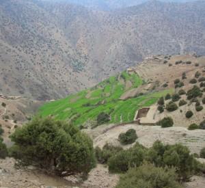 """Gospodarstwa należące do mieszkańców niegościnnych stoków marokańskich gór- Berberów.<br><span class=""""cc-link"""">Autor: Jan Ignacy Czempiński</span>"""
