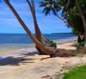 "<span class='dscr'>Malownicza plaża na Yap, jakich wiele na wszystkich wyspach Mikronezji</span><br><span class=""cc-link""><a href=""http://www.flickr.com/photos/12453467@N00/3816178815/"" target=""_blank"">Autor:taka_aka_T</a><a href='http://creativecommons.org/licences/by/3.0'>&nbsp;<img class=""cc-icon"" src=""mods/_img/cc_by-small.png""></a></a></span>"
