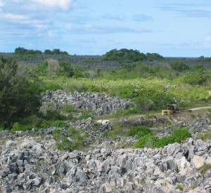 """Po latach eksploatacji większość Nauru zamieniła się w pustkowie<br><span class=""""cc-link""""><a href=""""http://www.flickr.com/photos/40158576@N00/332436067/"""" target=""""_blank"""">Autor:David</a><a href='http://creativecommons.org/licences/by-sa/3.0'><img class=""""cc-icon"""" src=""""mods/_img/cc_by_sa-small.png""""></a></a></span>"""