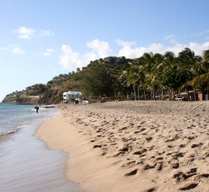 "Jedna z wielu pieknych plaż St Kitts i Nevis<br><span class=""cc-link""><a href=""http://www.flickr.com/photos/9725736@N02/2176218684/"" target=""_blank"">Autor:Jess</a><a href='http://creativecommons.org/licences/by-nd/3.0'> <img class=""cc-icon"" src=""mods/_img/cc_by_nd-small.png""></a></a></span>"