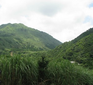 "Park Narodowy Yangmingshan<br><span class=""cc-link""><a href=""http://www.flickr.com/photos/edumariz/5924173349/"" target=""_blank"">Autor:Eduardo M. C. </a><a href='http://creativecommons.org/licences/by/3.0'> <img class=""cc-icon"" src=""mods/_img/cc_by-small.png""></a></a></span>"