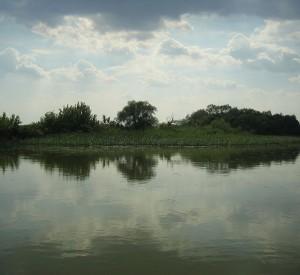 "Jezioro Cisa, którego północna część jest objęta Parkiem Narodowym Hortobagy<br><span class=""cc-link""><a href=""http://commons.wikimedia.org/wiki/File:Tisza-tó.jpg"" target=""_blank"">Autor:Nemeth Daniel</a><a href='http://creativecommons.org/licences/by-sa/3.0'>&nbsp;<img class=""cc-icon"" src=""mods/_img/cc_by_sa-small.png""></a></a></span>"