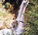"""<span class='dscr'>Park Narodowy Plitwice</span><br><span class=""""cc-link""""><a href=""""http://dokadjechac.pl/profil/joanna-ludwin"""" target=""""_blank"""">Autor:Joanna Ludwin</a>"""